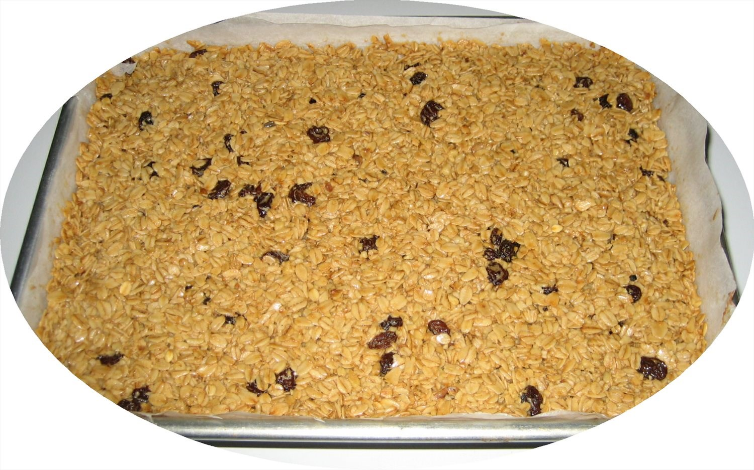 Oatmeal Raisin Squares