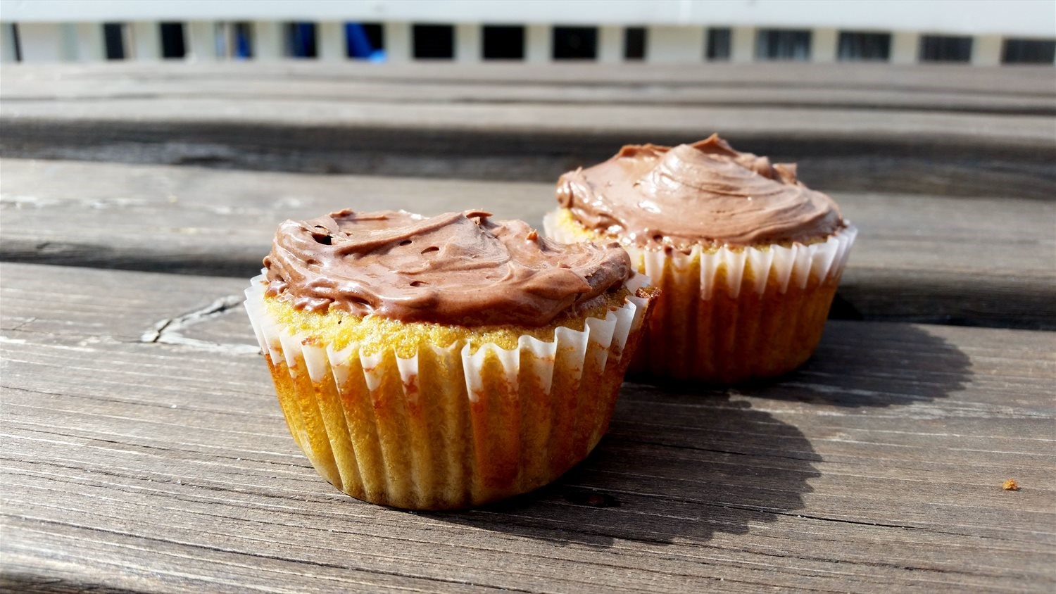 Paleo Cupcakes with Chocolate Frosting