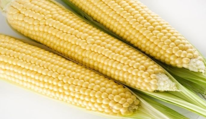 The Truth about CORN