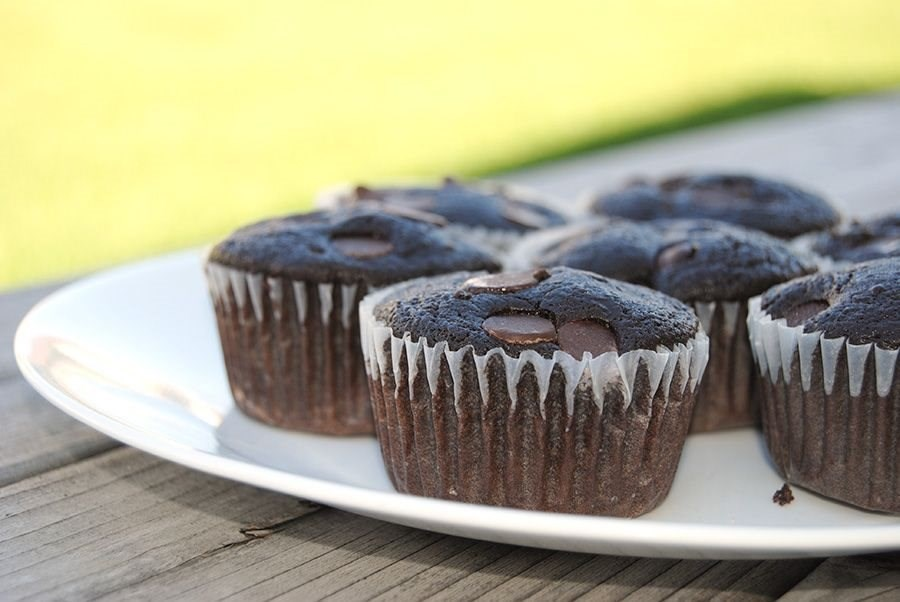 Chocolate and Vanilla Protein Muffins