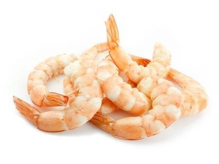 Fresh Wild Caught Shrimp